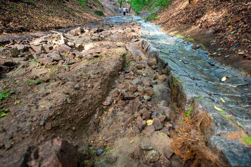 Der Rieselgrundweg wurde am 10. August 2020 nach einem sehr heftigen Regenguss stark beschädigt. Wassermassen stürzten ungebremst ins Tal des Lößnitzgrundes.