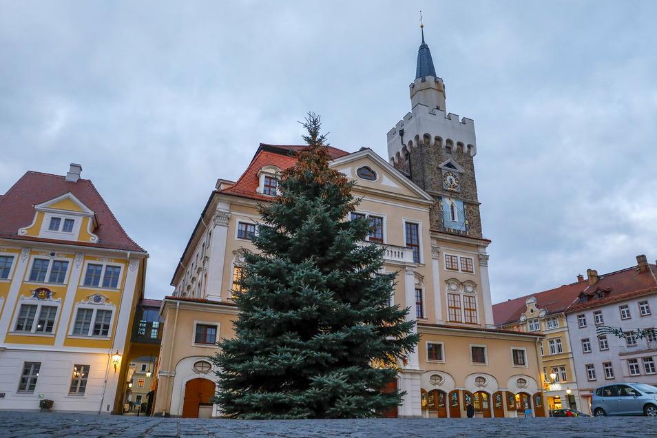 So sieht der diesjährige Weihnachtsbaum auf dem Altmarkt in Löbau aus.