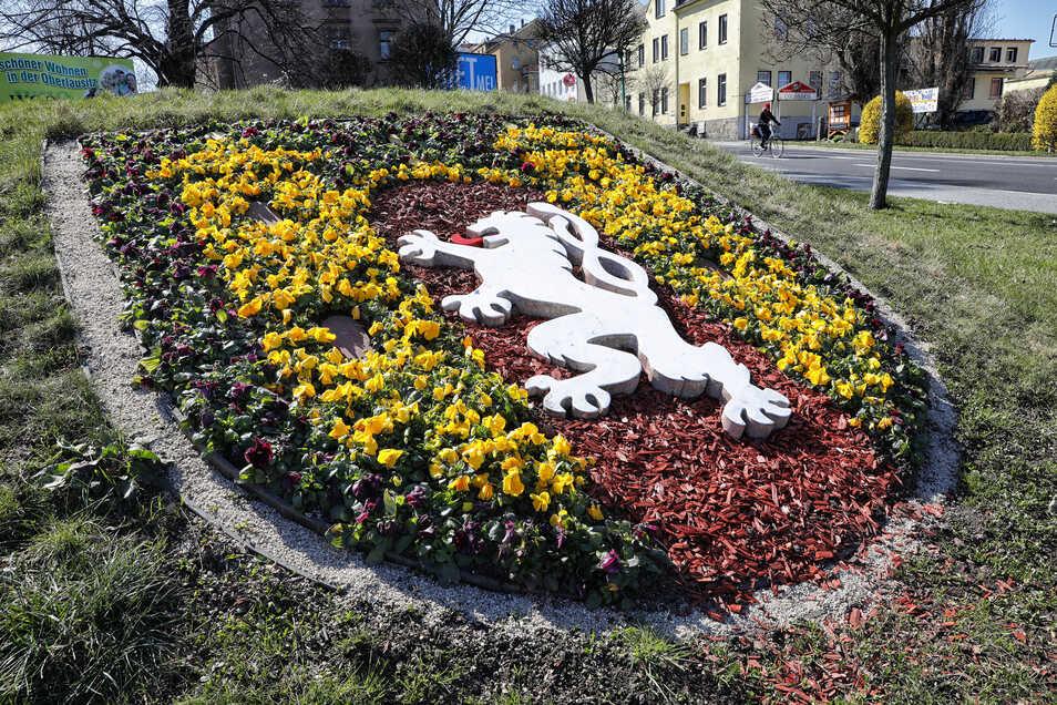 Auch das Stadtwappen an der Weißenberger Straße ist wieder mit Frühjahrsblühern bepflanzt worden.