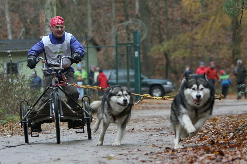Die Trainingsrennen in Oberbärenburg werden nicht stattfinden.