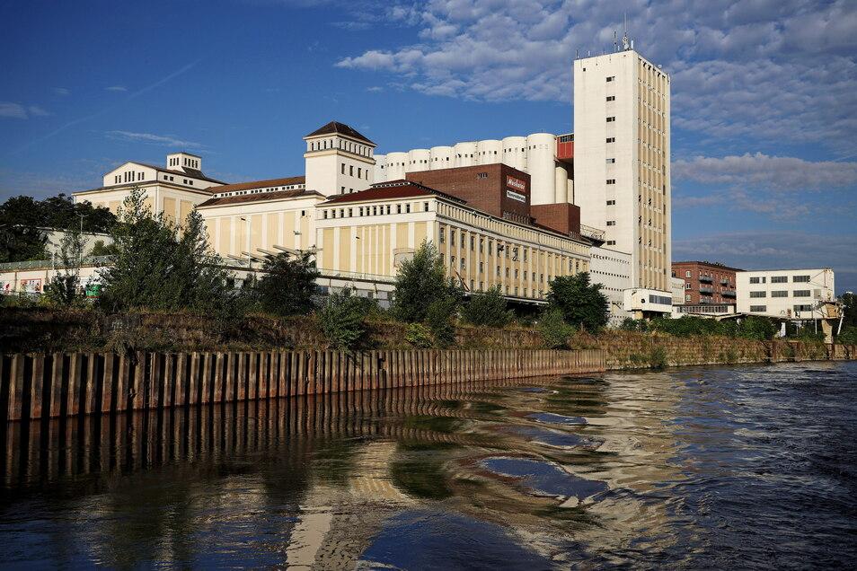 Das einstige Mischfutterwerk Muskator prägt Riesas Silhouette an der Elbe. Die Stadt will es zu einem grünen Quartier umbauen - und hat dafür nun erst einmal 400.000 Euro Fördergeld erhalten.