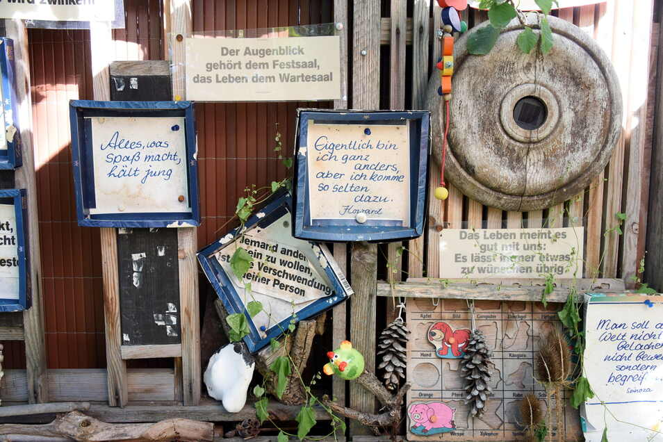 Eine Holzwand mit Sprüchen und Sammelstücken steht als Blickfang im Hundtschen Park.