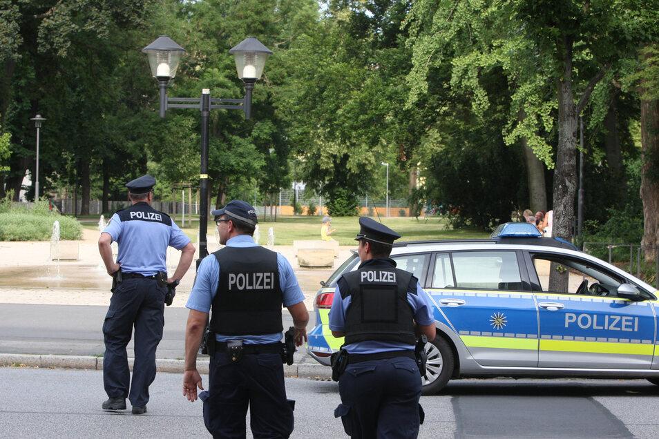 Immer wieder musste die Polizei wegen Alkoholdelikten in den Pirnaer Friedenspark anrücken.