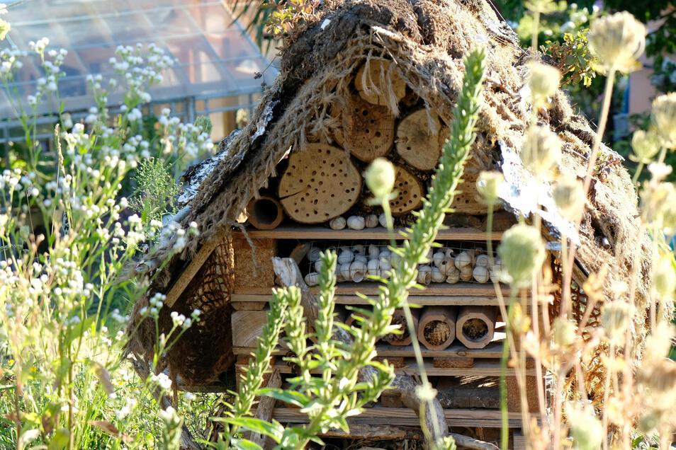 Das Insektenhotel half der Familie auch über Corona-Zeiten hinweg. Gemeinsam mit ihren Töchtern hat es Anne Hübschmann im Garten aufgestellt. Die beiden größeren Mädchen konnten hier die Natur beobachten und entdecken, als sie ihre Schulen nicht besuchen konnten. Auch ein Wellness-Pfad wurde im Garten angelegt.