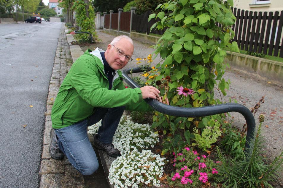 Olaf Haase ist einer der Bautzener, die sich in der Stadt für die Begrünung der Flächen rund um Straßenbäume engagieren.