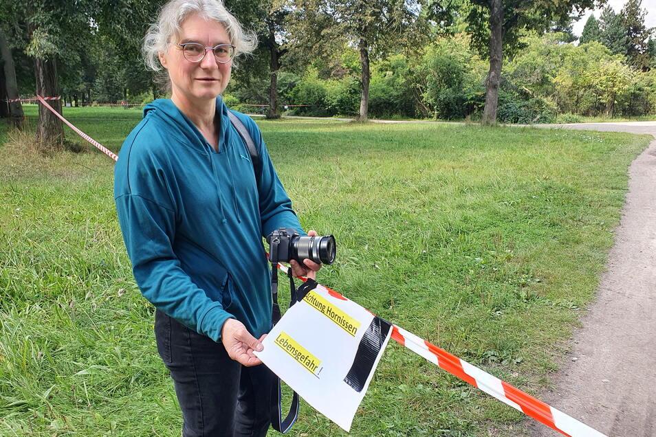 Hornissen-Expertin Marion Loeper machte sich vor Ort selbst ein Bild von der Lage.