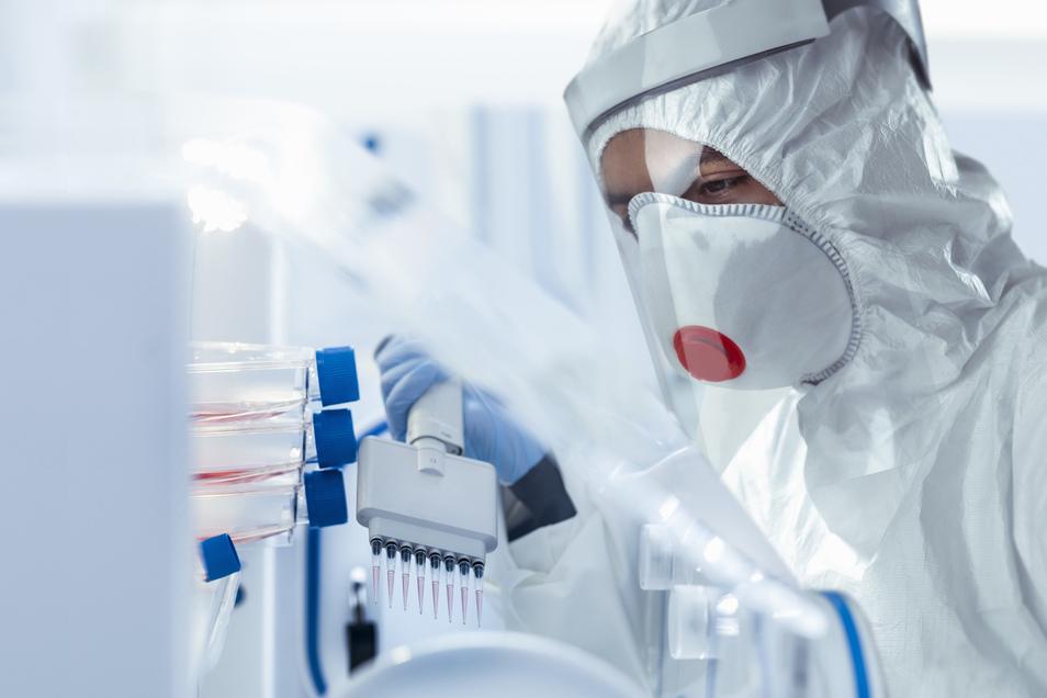 Die Zeit läuft. Jede Woche weiter im Jahr bekommt das Coronavirus bessere Chancen, sich auszubreiten. Allein in Sachsen arbeiten Hunderte Forscher daran, das Virus aufzuhalten.