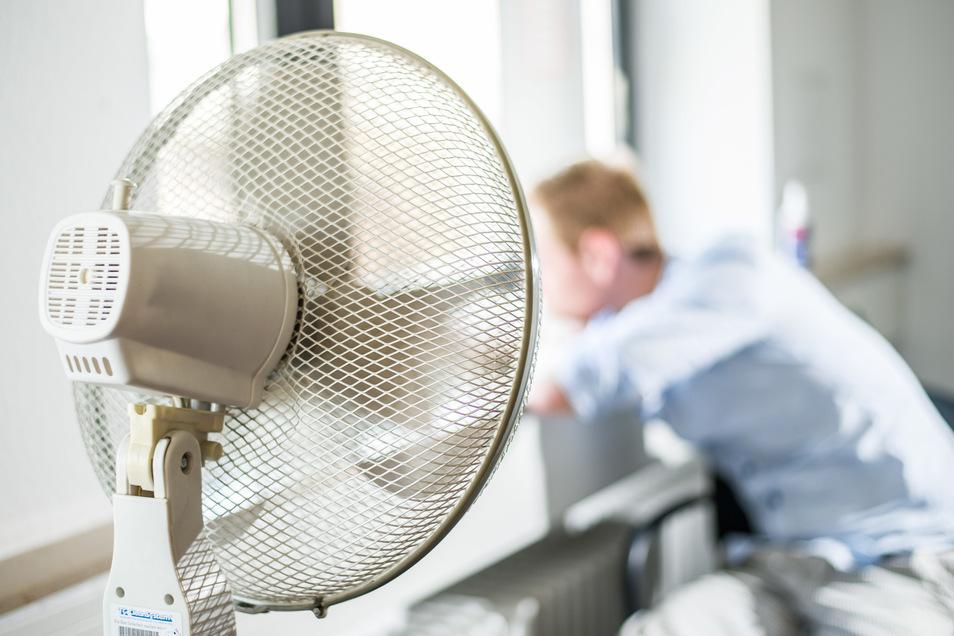 Der Angeklagte soll im Landratsamt einen Ventilator beschädigt haben. Tatsächlicher Schaden: null Euro. Dennoch wird er von der Behörde angezeigt.