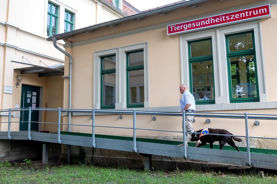 Ein Helfer braucht Hilfe: Dietmar Zschech bringt seinen Blindenführhund Janosch, den die Milben plagen, zur Sprechstunde.