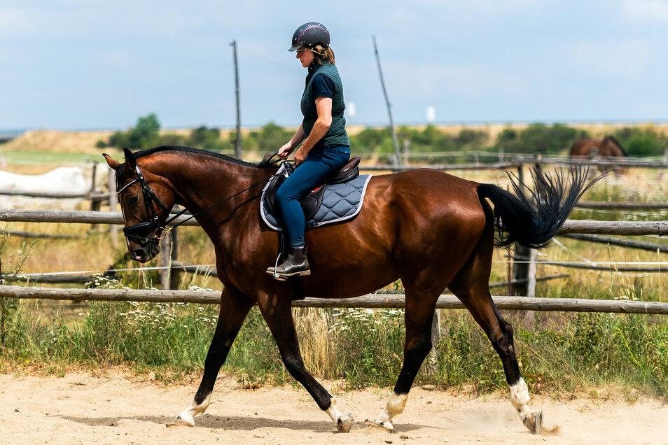 Kundin Susanne Staupe testet den Sattel in der Bewegung. Nicht nur das Pferd, auch die Reiterin muss sich wohlfühlen.