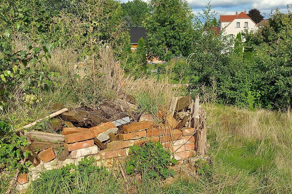 Die Reste eines Hauses im Großschweidnitzer Emil-Mitzscherlich-Weg. Der Landkreis hatte vor sieben Jahren ein einsturzgefährdetes Haus abgerissen. Die Eigentümer hätten den Schutt beseitigen müssen.