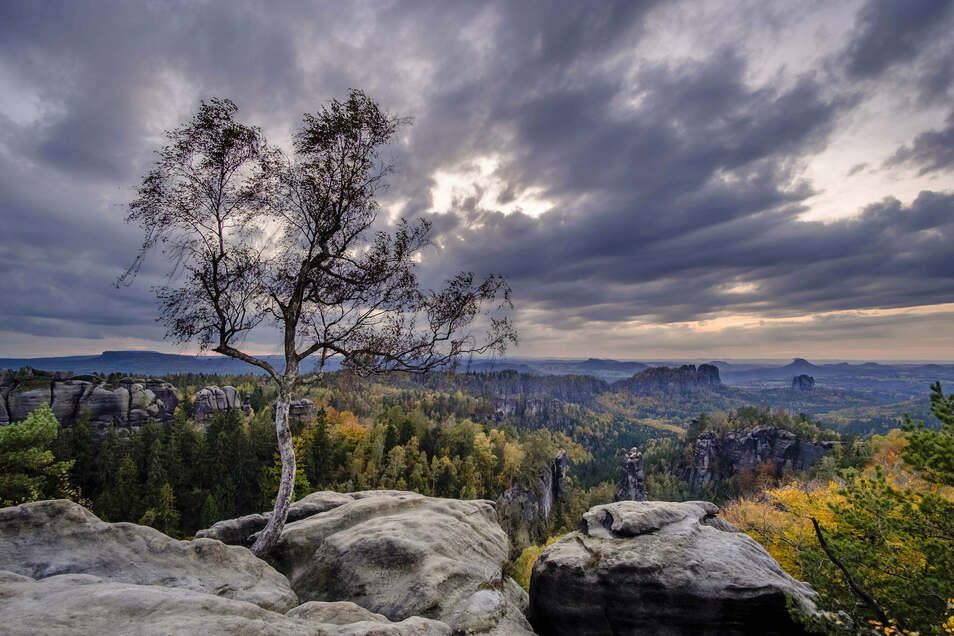 Die Sächsische Schweiz lockt mit traumhaften Ausichten wie auf den Hoher Torstein und den Falkenstein. Insgesamt gibt es im Nationalpark 755 Felsengipfel und 516 Kilometer Wegenetz.