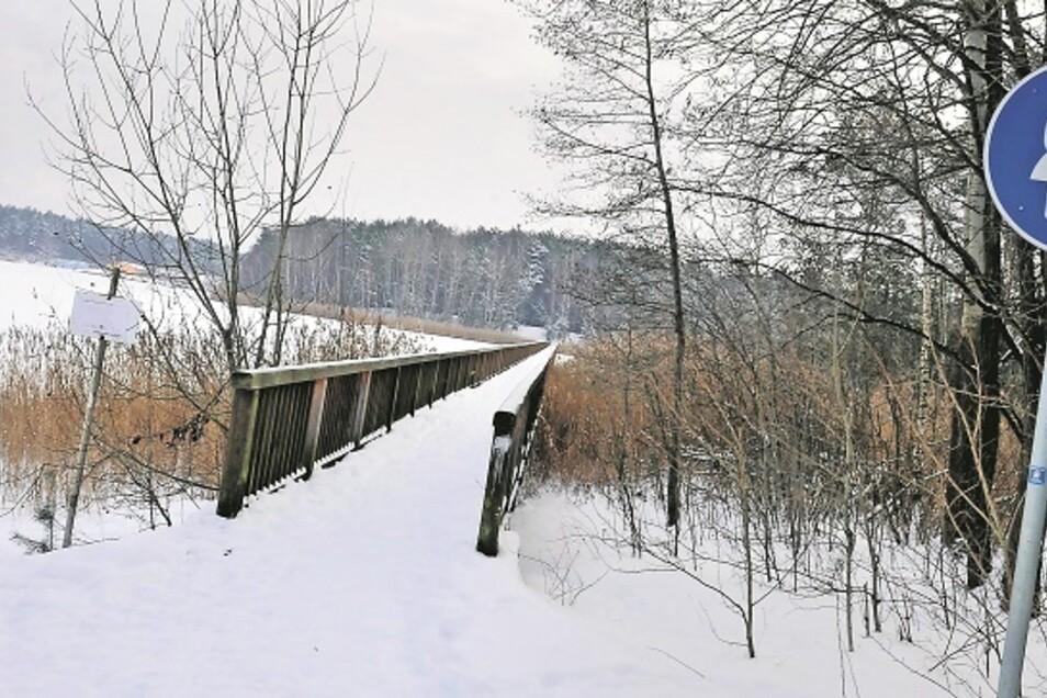 Die 200 Meter lange Braunsteichbrücke führt in ein geschütztes Erholungsgebiet. Verwitterung und Abnutzung haben ihr stark zugesetzt. Was eine Sanierung kosten würde, soll ein Experte jetzt ermitteln.