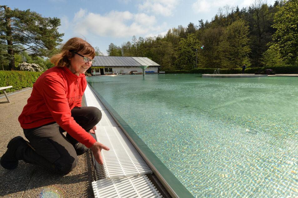 Voraussichtlich ab Mai kann im Waldbad Cunnersdorf wieder geschwommen werden - mit neuem Eintritt.