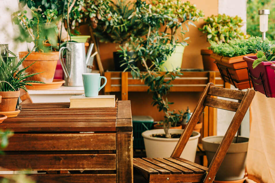 Für einen schön bepflanzten Balkon benötigt man keinen Grünen Daumen.