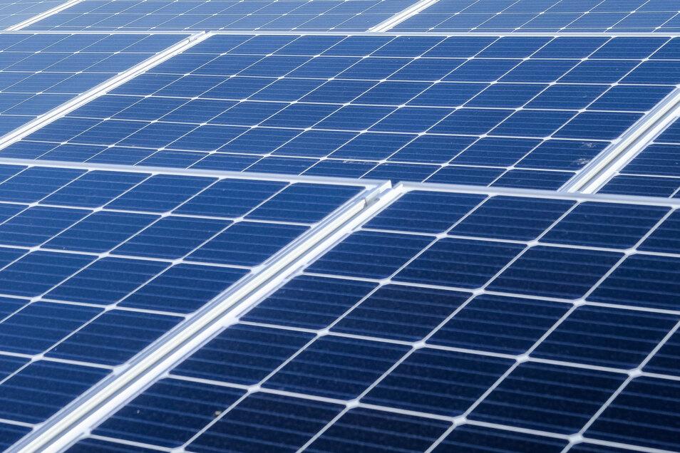In Zittau soll die siebente Photovoltaik-Freiflächen-Anlage entstehen.
