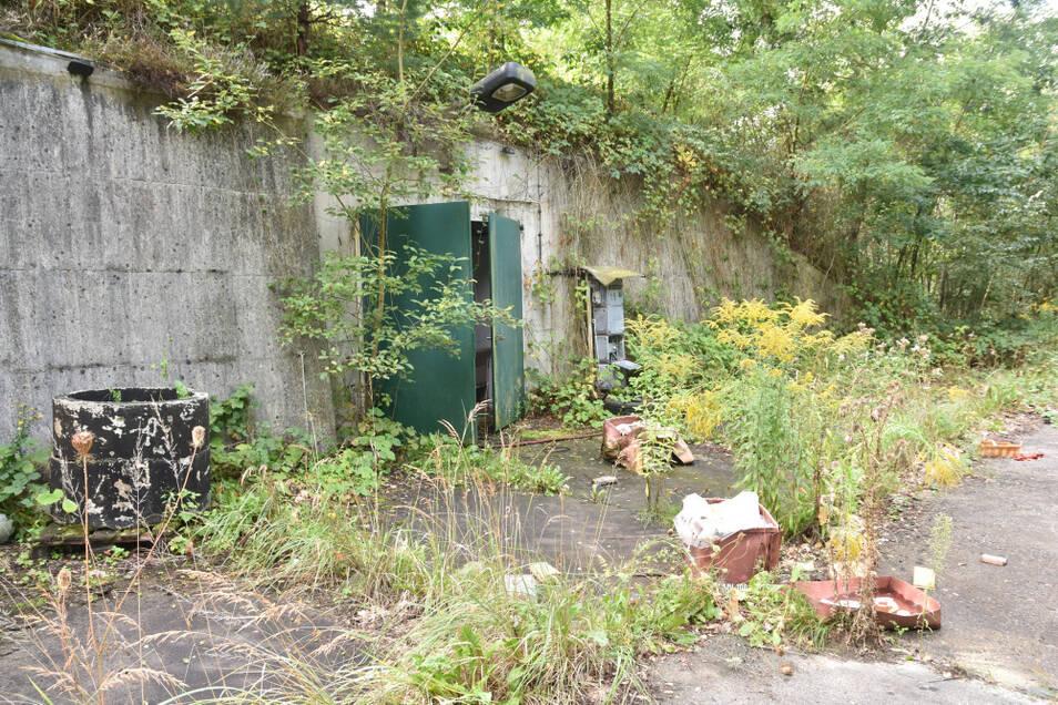 Bunker gibt es einige auf dem ehemals militärisch genutzten Gelände.