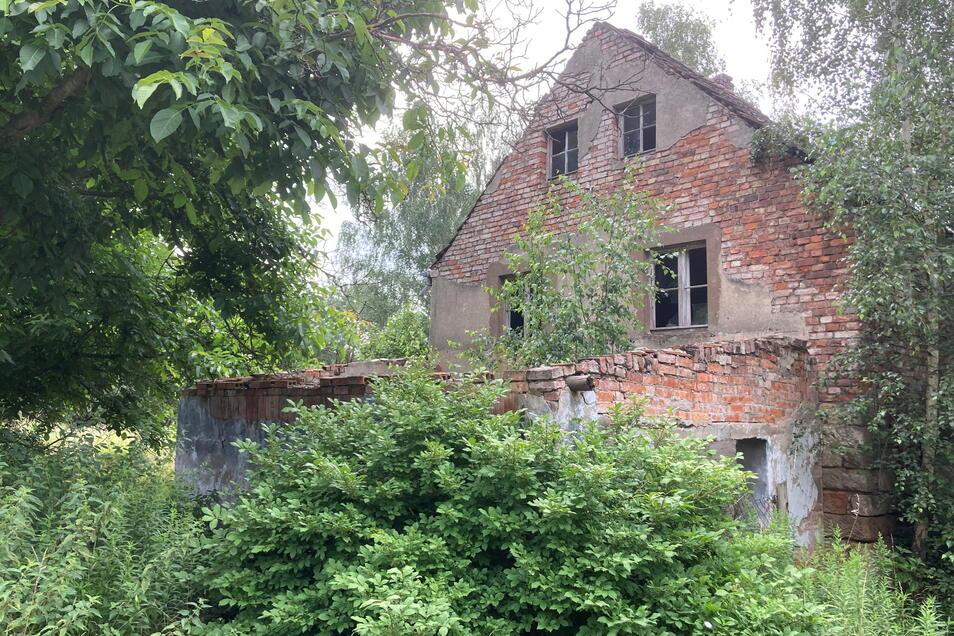 Steine des Anstoßes: Diese Ruine am Florian-Geyer-Weg soll weg. Dagegen haben auch Anwohner nichts, sie wollen nur nicht, dass dies der Startschuss für ein neues Wohngebiet wird.