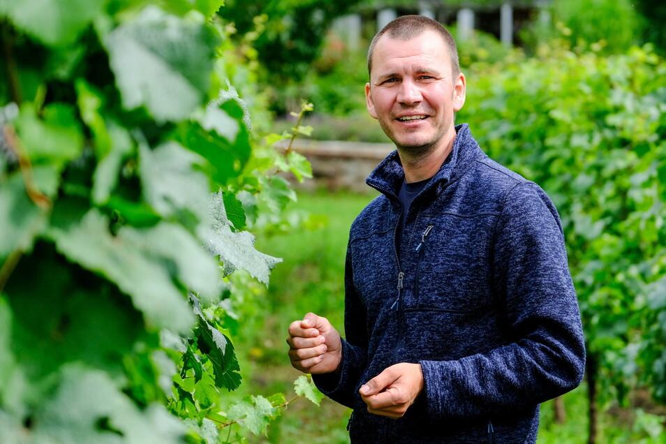 Felix Hößelbarth ist Leiter Weinbau der Radebeuler Hoflößnitz und im Ehrenamt für den Herkunftsschutz zuständig.