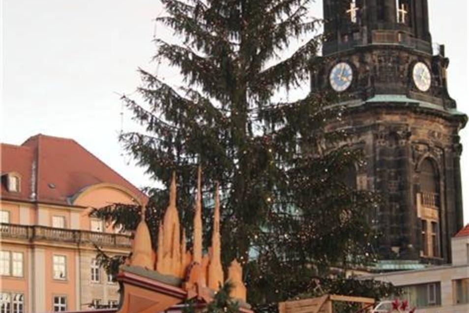 Der Baum des Volkes -  bei einer Abstsimmung im Internet gewählt.