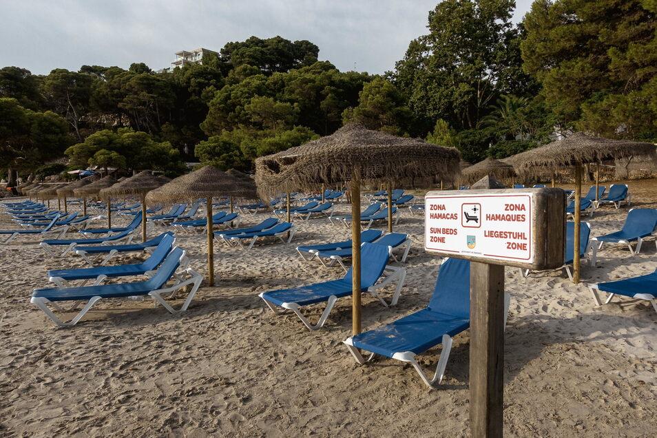 Leere Liegestühle stehen dicht am Strand in der sonnigen Cala Galdana an Menorcas Südküste zusammen.