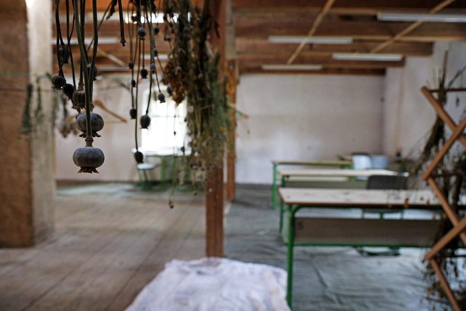 """Der """"Eulenraum"""" in Jahnishausen soll Ende Juli zum Atelier für die Landschaftsmaler werden."""