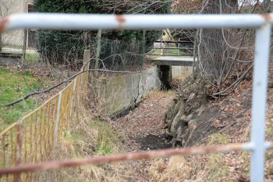 Am Großen Graben in Groß Krauscha ist einiges zu tun. Sorgen macht vor allem die Stützmauer, die teilweise schon eingebrochen ist.