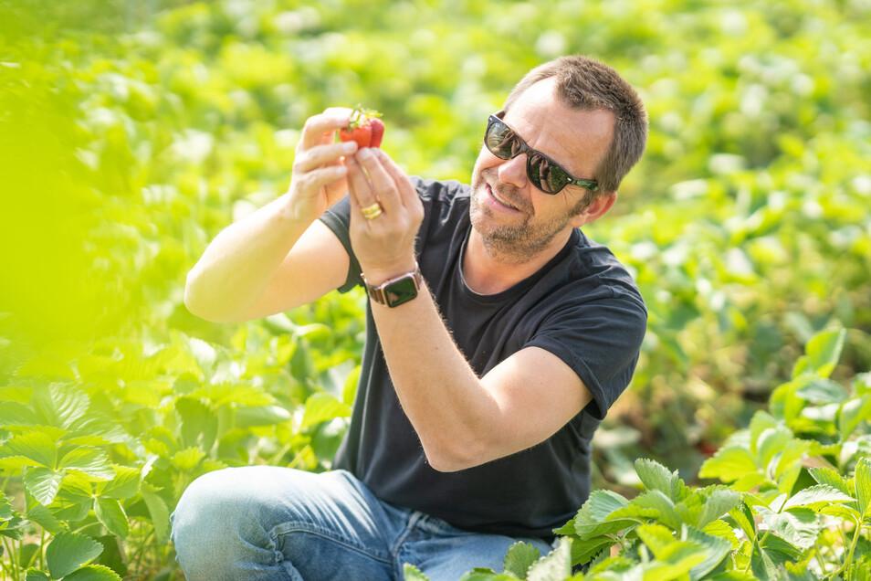 """Sein Großvater war Erdbeerbauer, sein Vater war es – auch Robert Dahl lernte den Beruf. Doch er merkte schnell, """"dass ich dieses Unternehmer-Gen habe und mehr will""""."""
