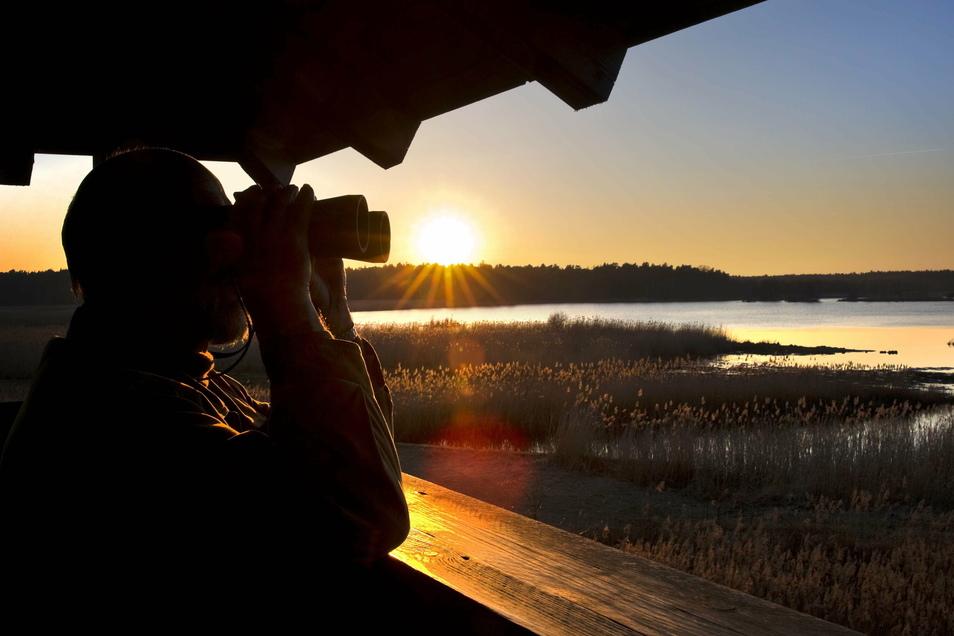 Seit Januar können Kinder und Jugendliche im Kreis Bautzen beim Projekt Junge Naturwächter die Natur beobachten und kennenlernen.
