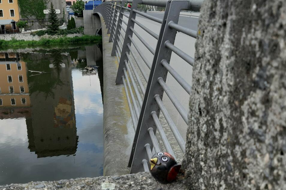 Ein Berzi an der Görlitzer Altstadtbrücke. Sogar in Zgorzelec sind die Vögelchen schon zu finden