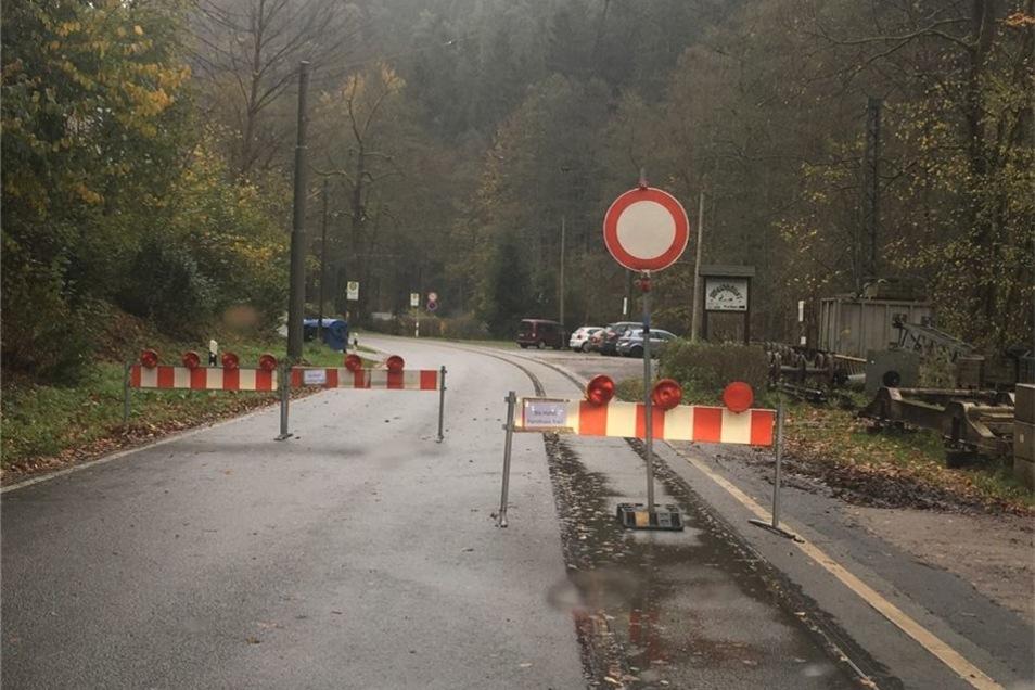 Die Kirnitzschtalbahn musste den Betrieb einstellen, nachdem eine Fichte in Höhe Nasser Grund in die Oberleitung gefallen war.