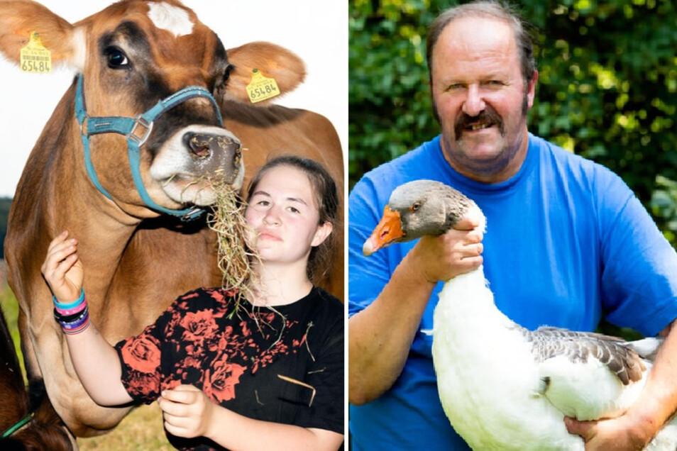 Theresa Simmig mit Helga, einem Jersey-Rind vom Landwirtschaftshof ihrer Familie in Weicha. Helga und ihr Halbbruder Henry sind am Wochenende in Wartha zu sehen. Thomas Bleul (r.) vom Reiterhof Kronförstchen liebt nicht nur Pferde. Seit Jahren beschäftigt