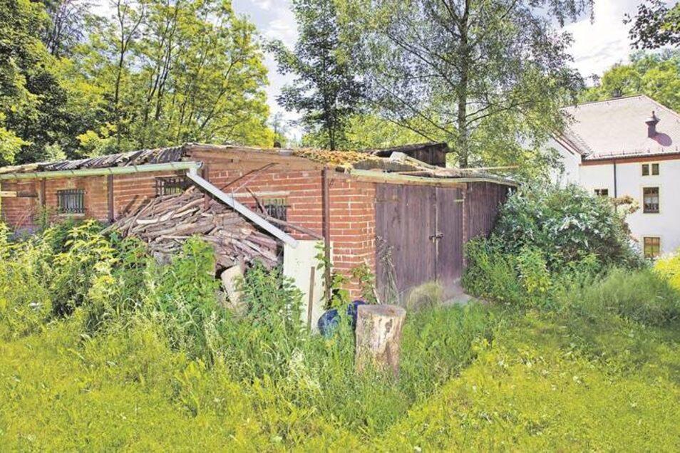 Beim Gerätehaus im Seifersdorfer Tal scheint der Zusammenbruch unmittelbar bevorzustehen. Das Dach ist undicht und auch die Wände sind teilweise marode. In dem Gebäude hat der Verein Seifersdorfer Thal seine Arbeitsgeräte untergebracht. Foto: Willem Darre