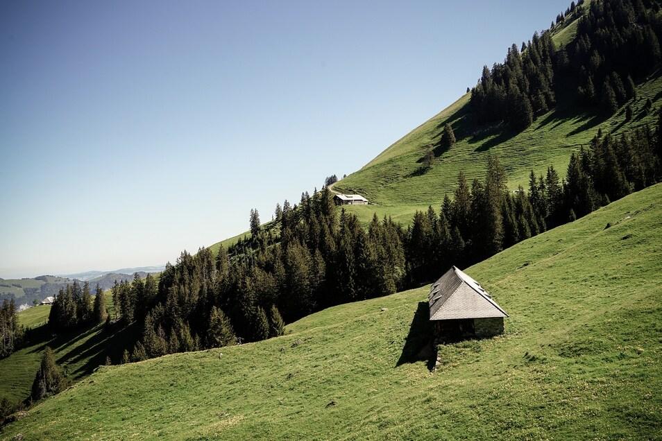 Eine Alm in der Schweiz.