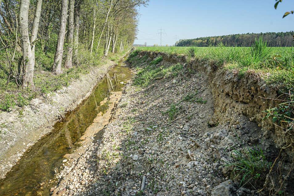 Der Wuschenzgraben bei Lomske ist ein Sorgenkind der Gemeinde. In diesem Bereich sind Teile der Böschung an mehreren Stellen abgebrochen.
