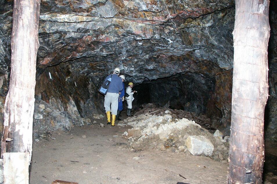 Schon 2008, als das kanadische Unternehmen Tinco begonnen hatte, das Osterzgebirge zu erkunden, haben seine Mitarbeiter auch die den Kupfergrübner Stollen in Sadisdorf sich angesehen. Damals stand noch Zinn im Fokus der Erkundungen.