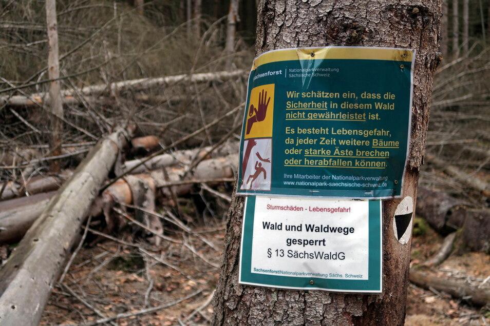 Abzweig in die Löfflerschlüchte im hinteren Teil des Großen Zschands: Lebensgefahr für Waldbesucher.
