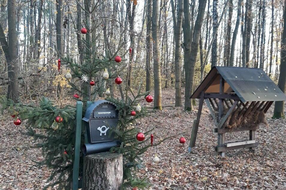"""Im Bauernbusch wartet ein Briefkasten auf die Wunschzettel der Kinder. Die werden von Ehrenberger """"Wichteln"""" auch beantwortet."""