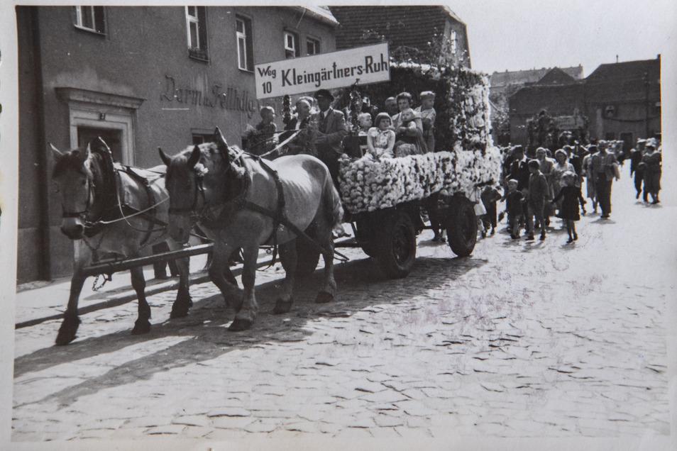Kleingärtner nahmen in der 1960er Jahren mit diesem Gespann an einem Festumzug durch Riesa teil.
