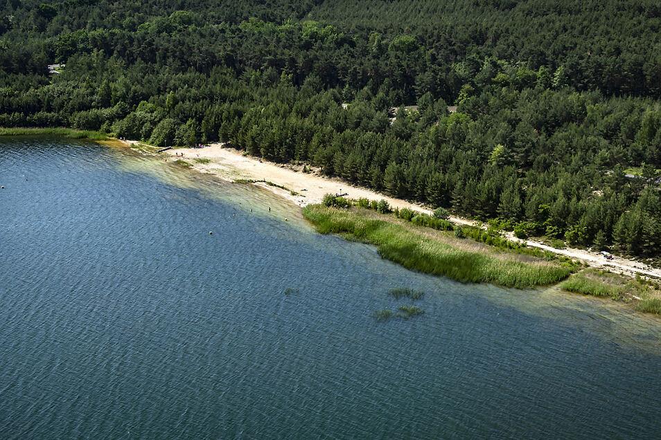 Oberhalb des Strandes, wo jetzt noch Bäume stehen, sollen Liege-Terrassen für die Badegäste geschaffen werden.
