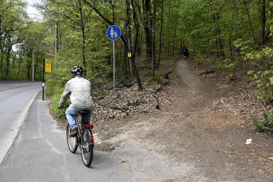 Für Radfahrer und Fußgänger ist der Weg neben der Bautzner Straße zu eng. Andreas Reuther schlägt vor, den rechts parallel verlaufenden Weg durch den Albertpark für Fußgänger auszuweisen. Dann könnten Radfahrer die Verbindung direkt neben der Straße nutze
