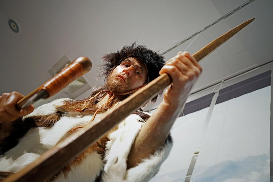 Diese Nachbildung von Ötzi ist momentan im Riesaer Stadtmuseum zu sehen.