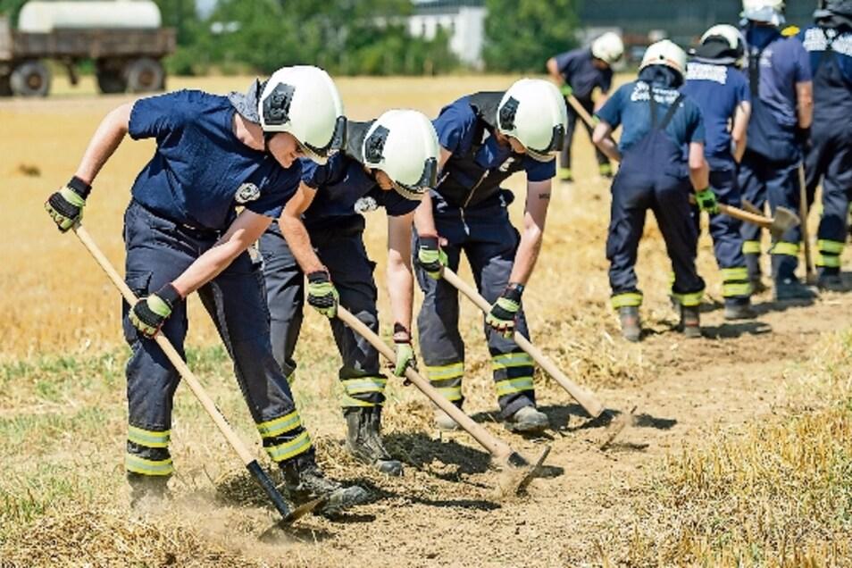 Die Feuerwehrleute legen eine Schneise an, um den Brand zu stoppen.