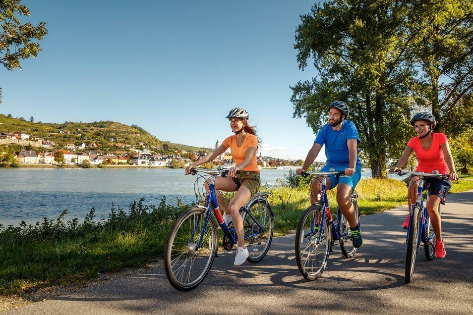 Genussradfahren in der Wachau Krems an der Donau