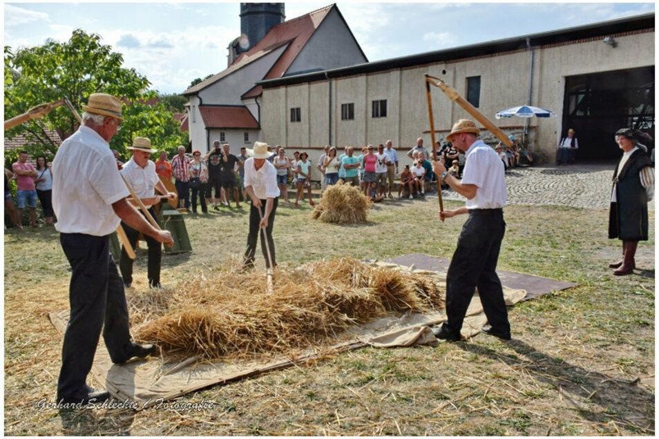 Beim Dresch- und Handwerkertag im Schloss Schleinitz können die Besucher auch selbst aktiv werden.