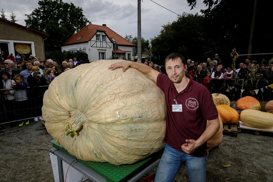 Der Kürbis von Andreas Baumert brachte im Jahr 2019 genau 738,64 kg auf die Waage und war damit der schwerste seiner Art beim Ludwigsdorfer Kürbiswiegen.