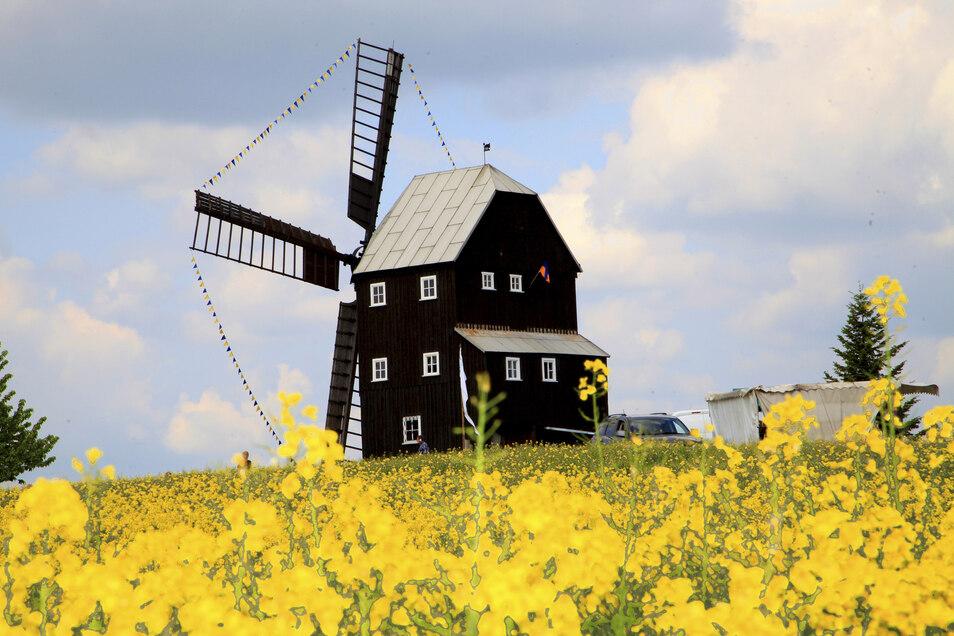 Die Bockwindmühle am Kottmar lädt am Sonntag zu einem Familientag ein.