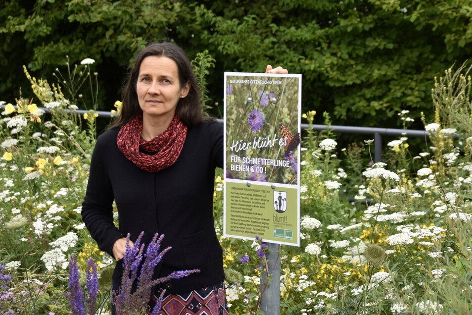 Am Goldbach in Großerkmannsdorf hat Annett Welskop eine naturnahe Wiese angelegt. Die Vielfalt ist überraschend.