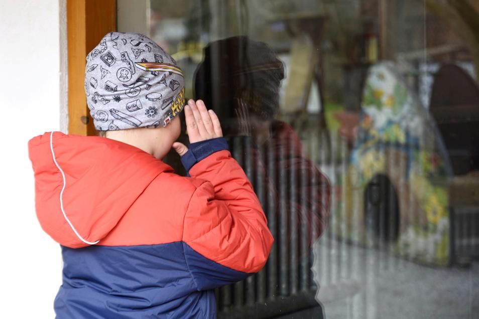 Endlich mal wieder die Nase platt drücken an den Scheiben der Tiergehege: Für den siebenjährigen Ben war der Besuch im Tierpark Bischofswerda jetzt eine willkommene Abwechslung.