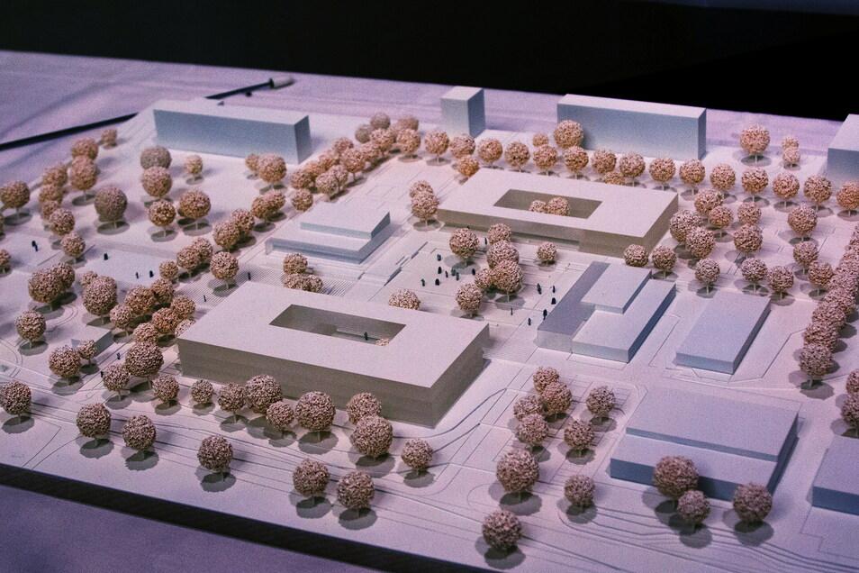 Vor zwei Jahren hatte das Dresdner Büro O+M Architekten mit diesem Entwurf ein Werkstattverfahren für das künftige Schulzentrum in Döbeln Ost gewonnen. Vorn ist die Förderschule, hinten die Grundschule. Letztere soll soll jetzt gebaut werden.